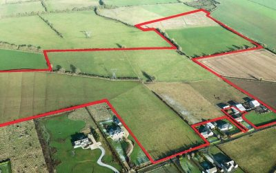 Lands At Richardstown and Danielstown, Clane, Co. Kildare